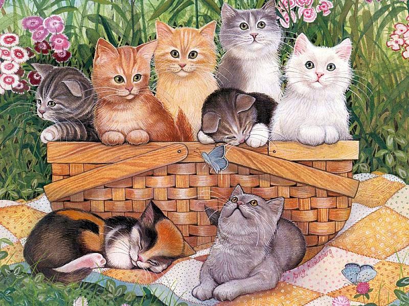 Для открыток, открытка много кошек