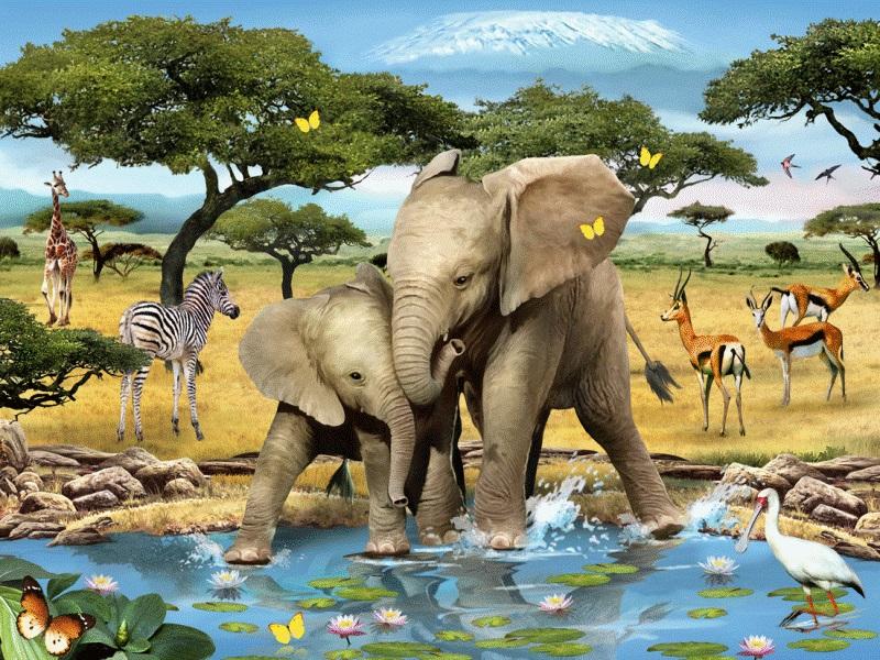 Пазл Собирать пазлы онлайн - Два слоненка
