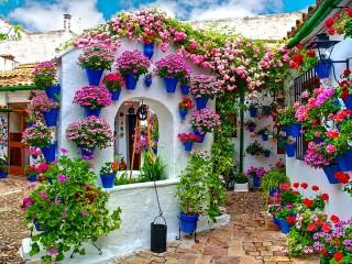 Собирать пазл Дворик в цветах онлайн