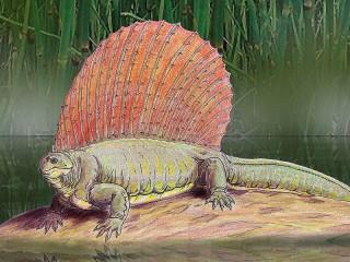 Собирать пазл Эдафозавр онлайн