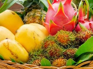 Собирать пазл Экзотические фрукты онлайн