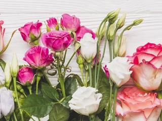 Собирать пазл Эустома и роза онлайн