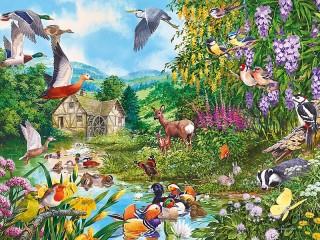Собирать пазл Флора и фауна онлайн