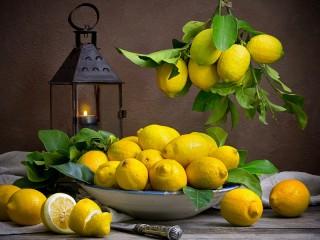 Собирать пазл Фонарь и лимоны онлайн