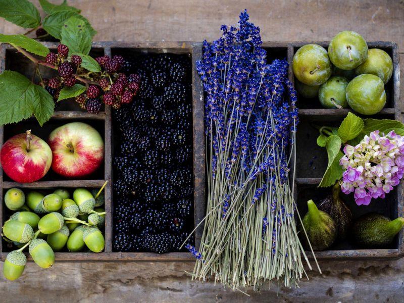 Пазл Собирать пазлы онлайн - Фрукты ягоды