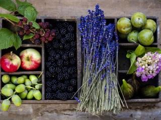 Собирать пазл Фрукты ягоды онлайн