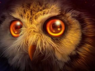 Собирать пазл Глаза совы онлайн