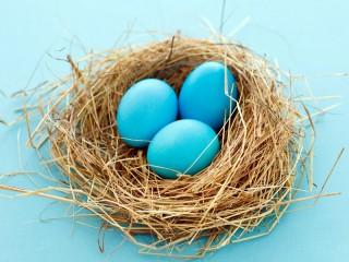 Собирать пазл Гнездо онлайн