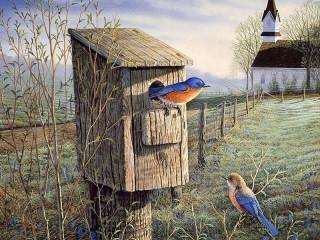 Собирать пазл Голубая птичка онлайн