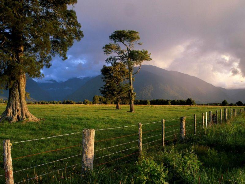 Пазл Собирать пазлы онлайн - Горы трава деревья