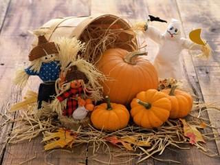 Собирать пазл Готовы к Хэллоуину онлайн