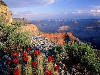 Собирать пазл Grand Canyon онлайн