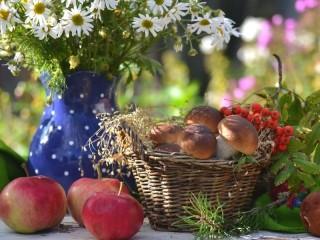Собирать пазл Грибы яблоки ромашки онлайн
