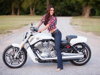 Собирать пазл Harley-Davidson онлайн