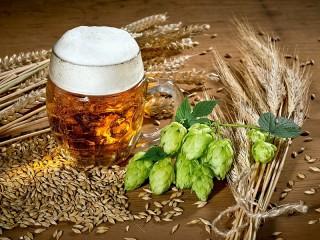 Собирать пазл Хмель и пшеница онлайн