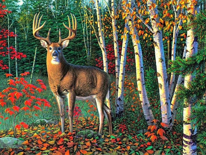 Пазл Собирать пазлы онлайн - Хозяин леса