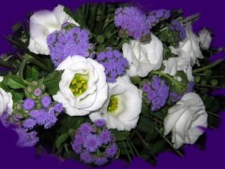 Собирать пазл Ирландская роза онлайн