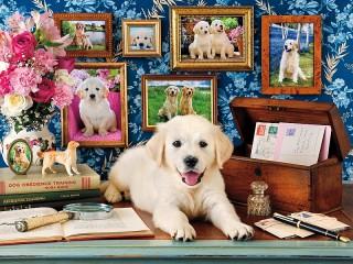 Собирать пазл Из жизни собак онлайн