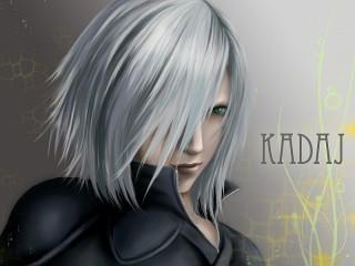 Собирать пазл Kadaj онлайн