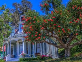 Собирать пазл Калифорнийский дом онлайн