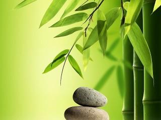 Собирать пазл Камни и бамбук онлайн