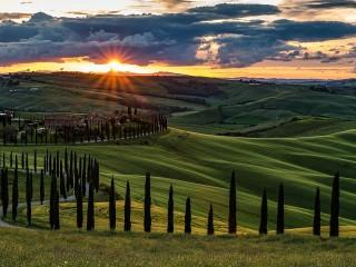 Собирать пазл Кипарисы Тосканы онлайн