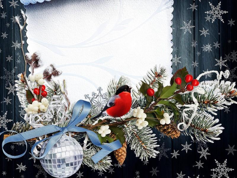 Пазл Собирать пазлы онлайн - Коллаж со снегирем