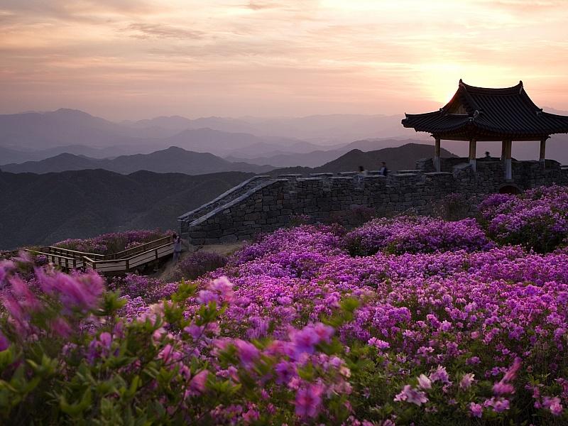 Пазл Собирать пазлы онлайн - Корея
