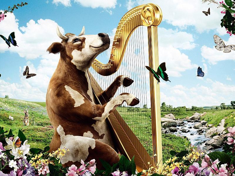 Пазл Собирать пазлы онлайн - Корова меломан