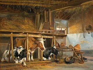 Собирать пазл Коровы в хлеву онлайн