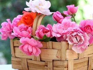 Собирать пазл Корзина с розами онлайн