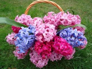 Собирать пазл Корзина с цветами 1 онлайн
