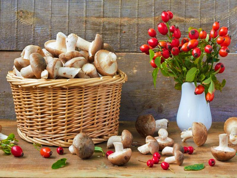 Пазл Собирать пазлы онлайн - Корзинка с грибами