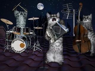 Собирать пазл Кошачья группа онлайн