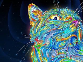 Собирать пазл Космический кот онлайн