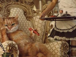 Собирать пазл Кот-аристократ онлайн