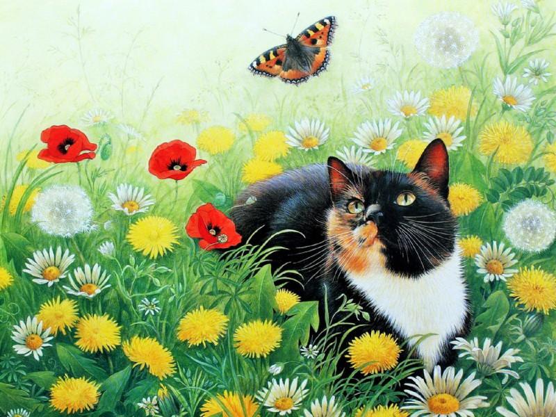 Пазл Собирать пазлы онлайн - Кот и бабочка 1
