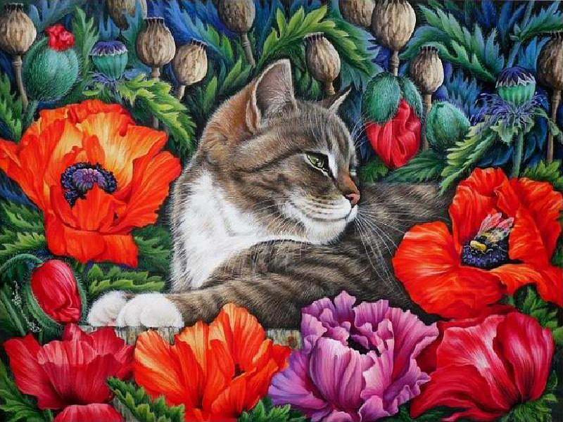 Пазл Собирать пазлы онлайн - Кот и маки
