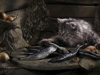Собирать пазл Кот и селёдка онлайн