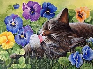 Собирать пазл Кот и цветы онлайн
