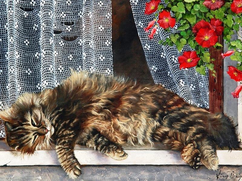 Пазл Собирать пазлы онлайн - Кот на окне