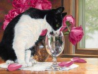 Собирать пазл Кот пьет воду онлайн