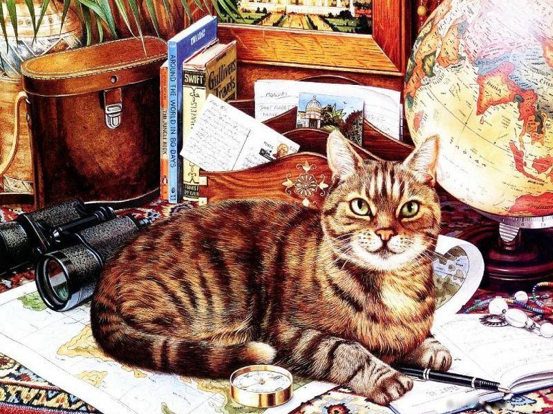 Пазл Собирать пазлы онлайн - Кот-путешественник