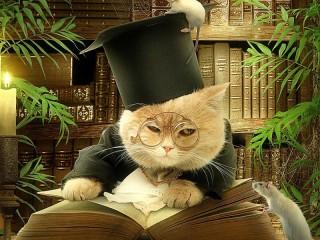 Собирать пазл Кот ученый онлайн