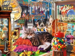Собирать пазл Кот в лавке онлайн