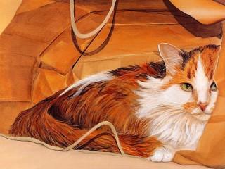 Собирать пазл Кот в пакете онлайн