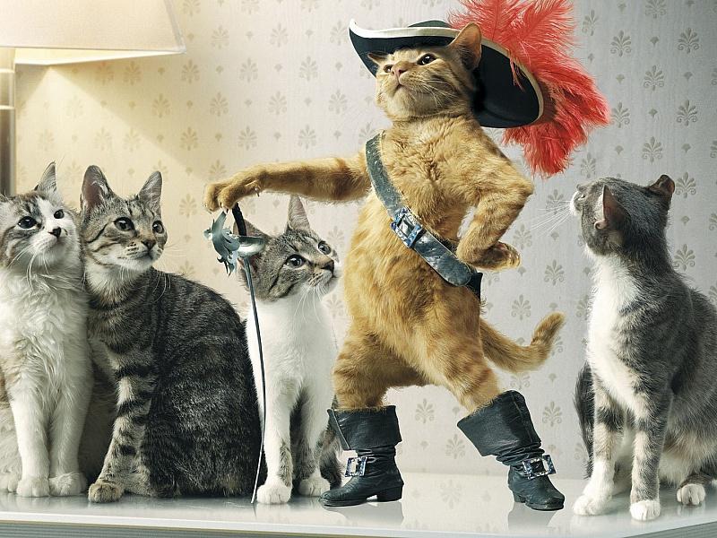 Пазл Собирать пазлы онлайн - Кот в сапогах