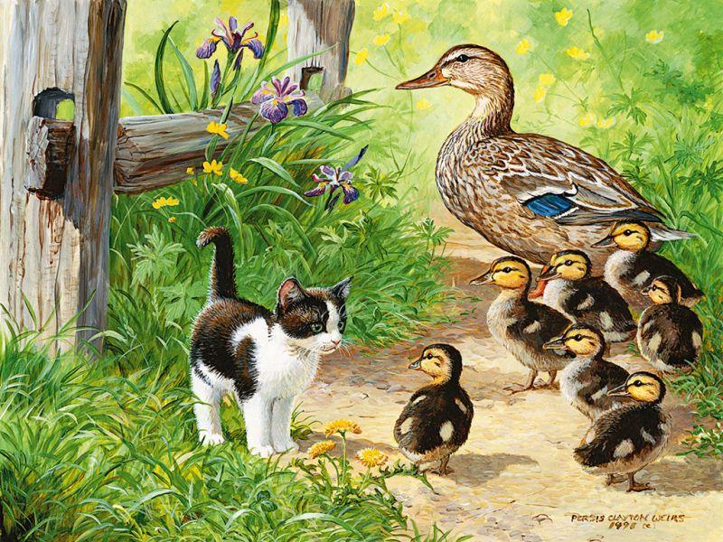 Пазл Собирать пазлы онлайн - Котенок и утки