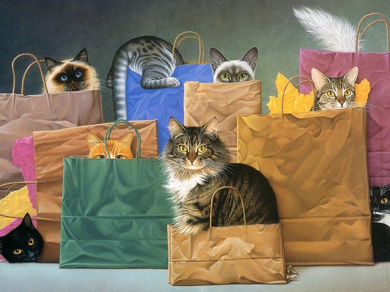 Пазл Собирать пазлы онлайн - Коты в пакетах