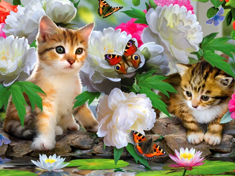 Пазл Собирать пазлы онлайн - Котята и бабочки